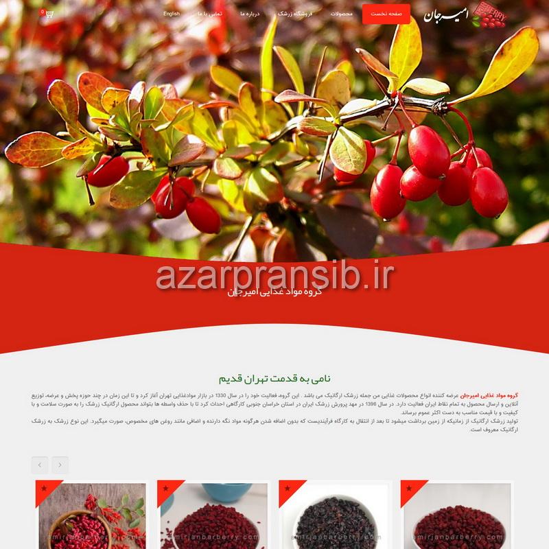 طراحی وب سایت و بهینه سازی وب سایت (سئو SEO وبسایت) فروشگاه زرشک امیرجان