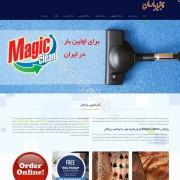 طراحی وب سایت و بهینه سازی وب سایت (سئو SEO وبسایت) قالیشویی بارمان