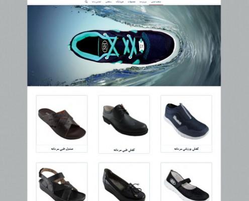 طراحی وب سایت و بهینه سازی وب سایت (سئو SEO وبسایت) کفش طبی شهرام طب